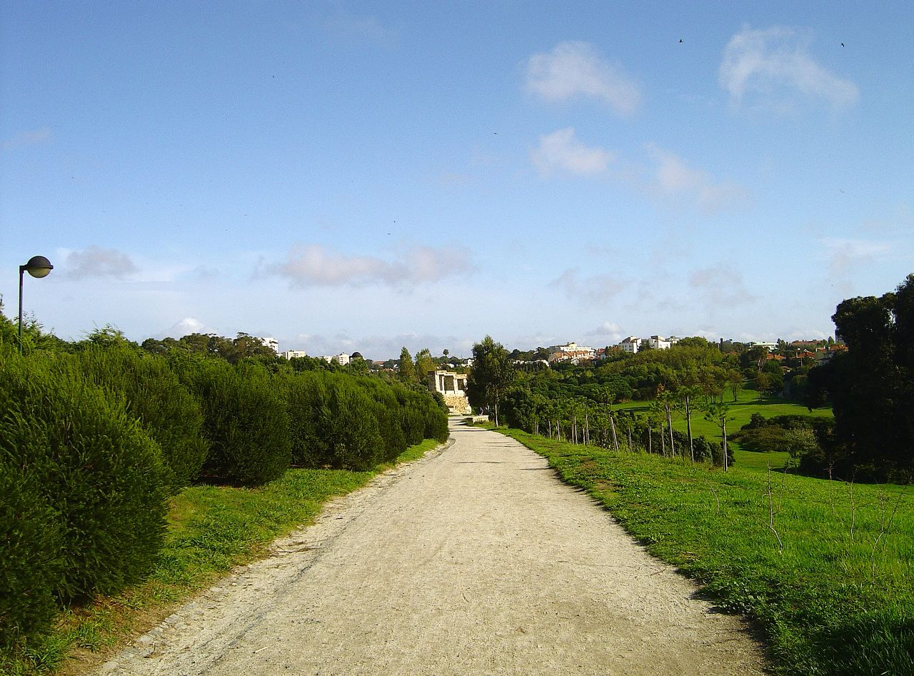 Parque da Cidade do Porto vai ficar ainda maior em 2021