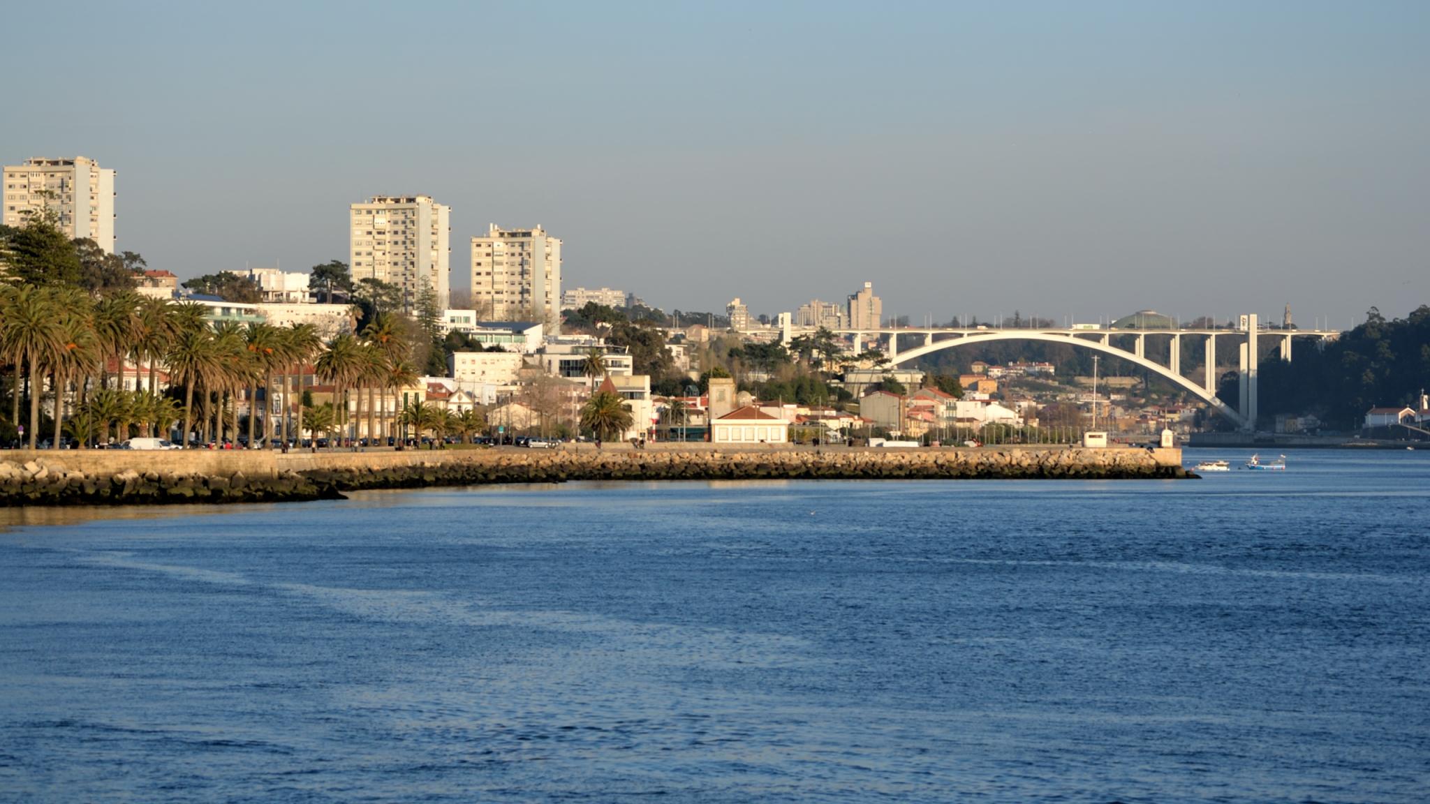 Foz do Douro, o novo pólo de atração do imobiliário? Especialistas dizem que sim